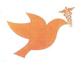HOPE Chair Peace through Health.jpg
