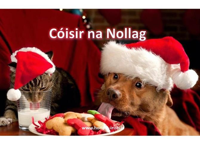 Tráth na gCeist agus Cóisir na Nollag