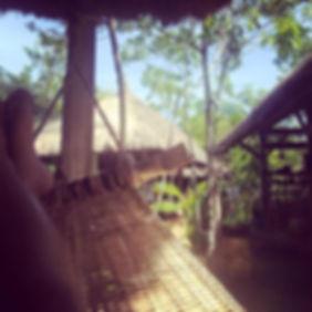 hammock (1).jpg