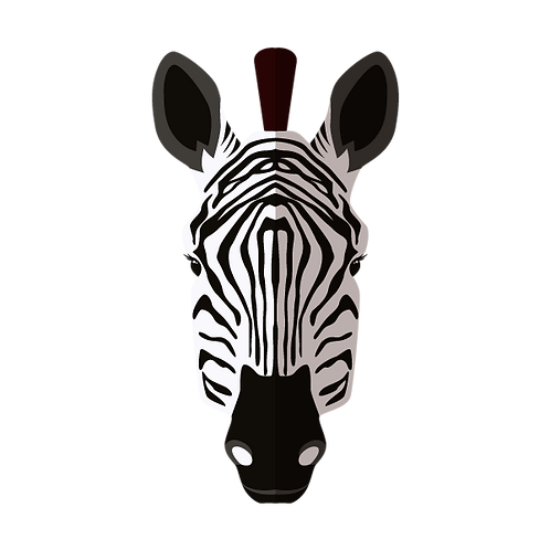 Zebra donatie Jungle Boogie
