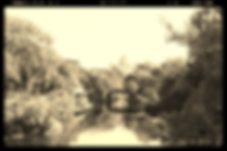 Asian River Scene