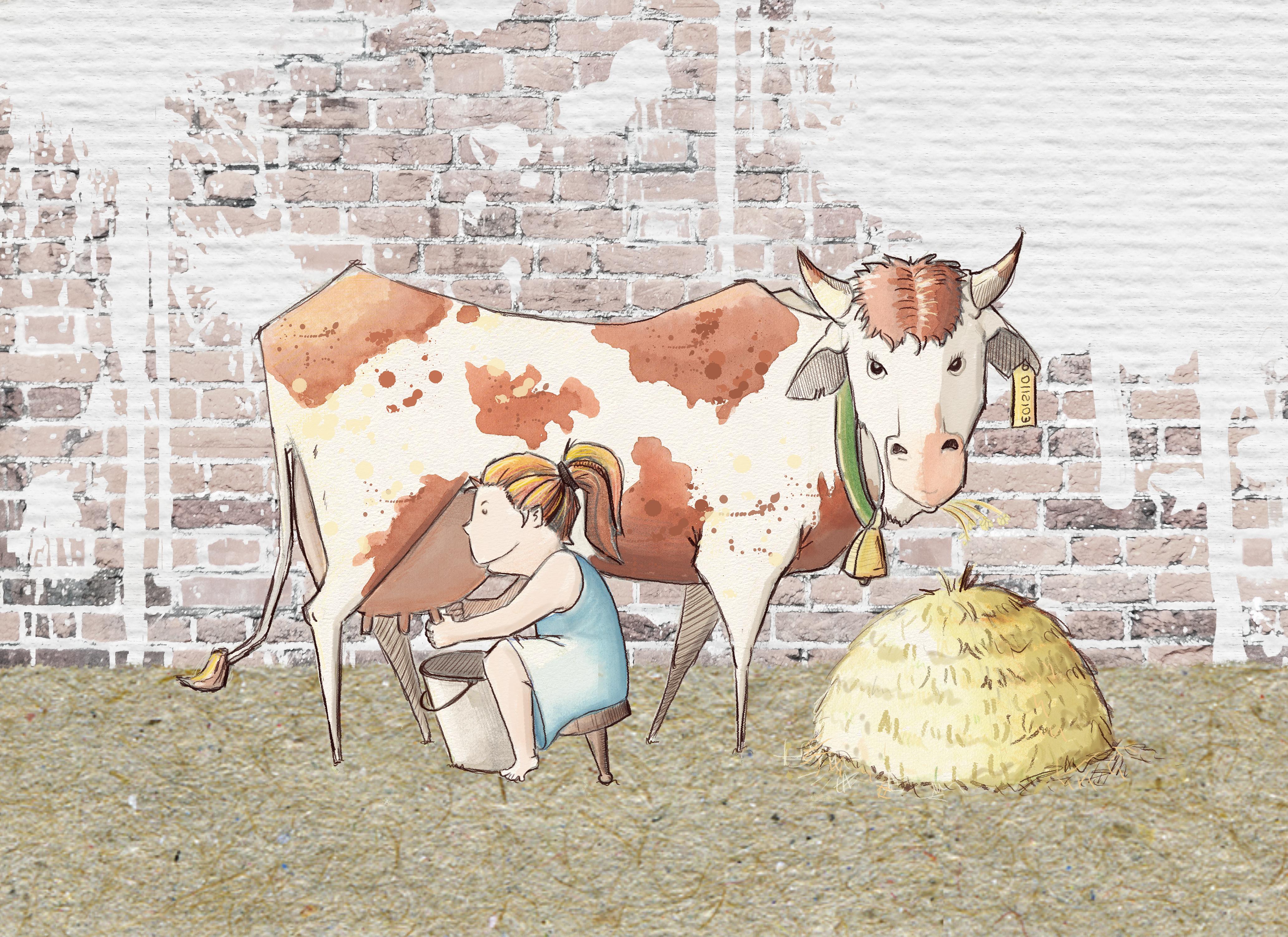 mucca mungitura