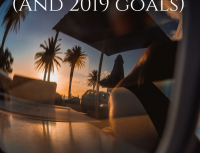 Reflection of 2018 and Goals for 2019!