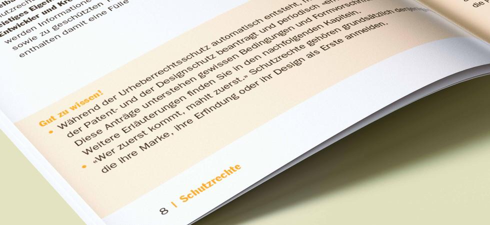IGE_Booklet_WebGuide_3_.jpg