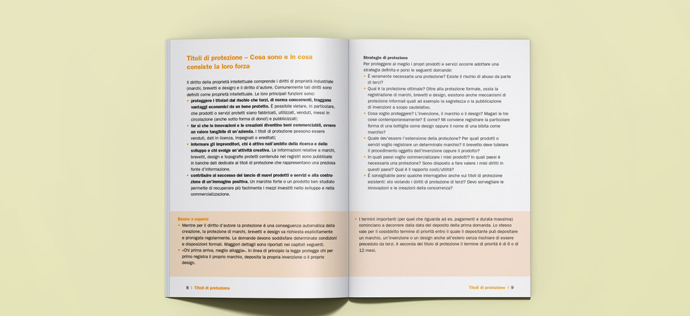 IGE_Booklet_WebGuide_4.jpg