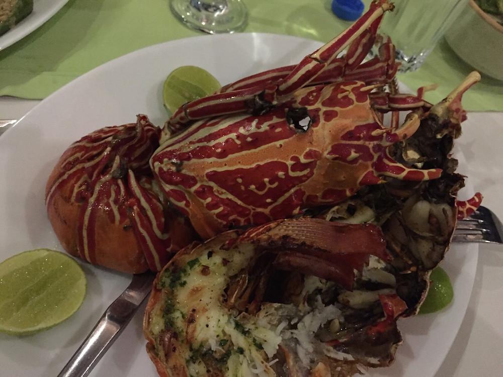 Zanzibar lobster