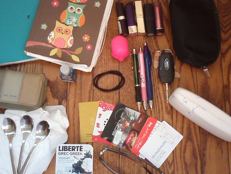 Project Purse Dump: Author Rosanna Leo