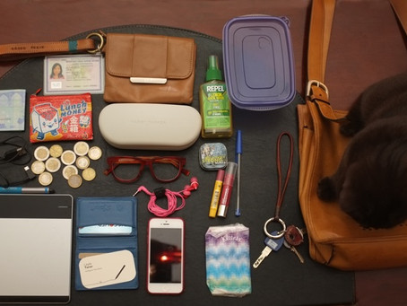 Project Purse Dump: Author Tara Quan