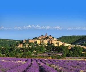 provence-544-1-1.jpg