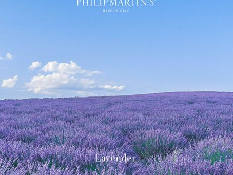La lavanda e i suoi benefici racchiusi nei prodotti Philip Martin's