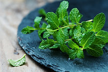 Active ingredient purifying mint Purifying Family