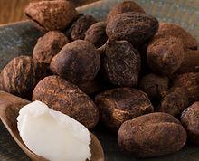 Active ingredient volumizing babassu oil Volumizing Family