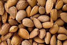 Active ingredient sweet almonds  color maintenance Color Family