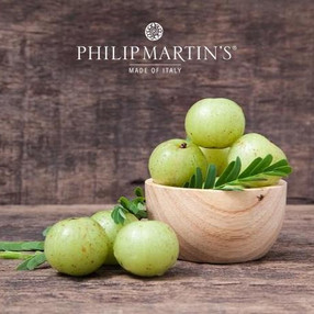 The ally of the immune system: Amla