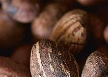 Principio attivo olio di macadamia colore vivo e lucentezza dei capelli colorati