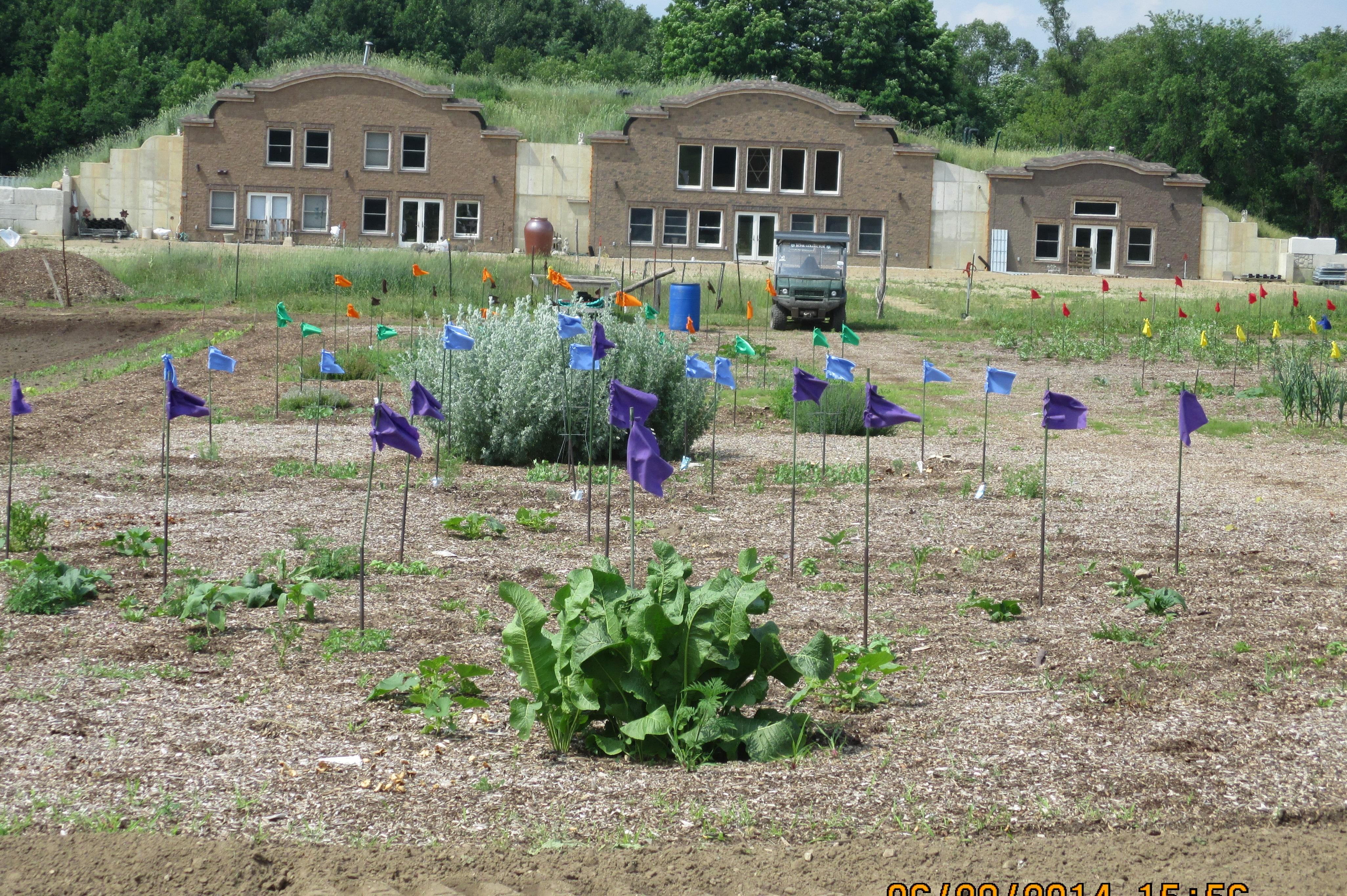 Colored Flags Organize the Garden