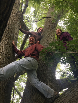 Students Climbing Trees