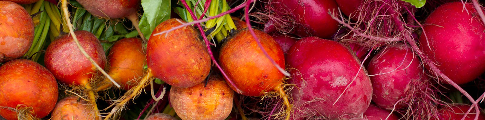 cropped root veggies.jpg