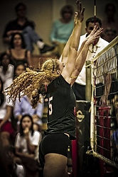 מאמן כושר אישי, לוני רוזנבלום, מאמן כדורשת, ללמד שחקנית ליברו להנחית