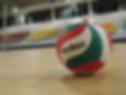 מאמן כדורשת, מאמן כדורעף, כדורשת נשים, המועדון הישראלי לכדורשת נשים, ליגת כדורשת, מאמאנט, ציוד כדורשת, נעלי כדורשת, מגני אצבעות לכדורשת