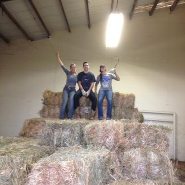 Stacking Hay.JPG
