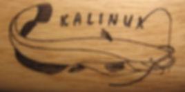 kalinux-logo (1).jpg