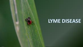 Lyme Disease:A Microscopist's Search foran Antibiotic-Free Solutionby Bjørn Johan Øverbye, MD