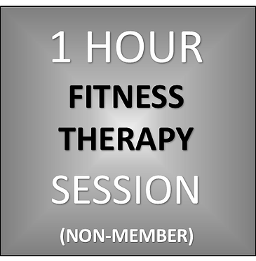 1 HOUR THERAPY SESSION (Non-Member)