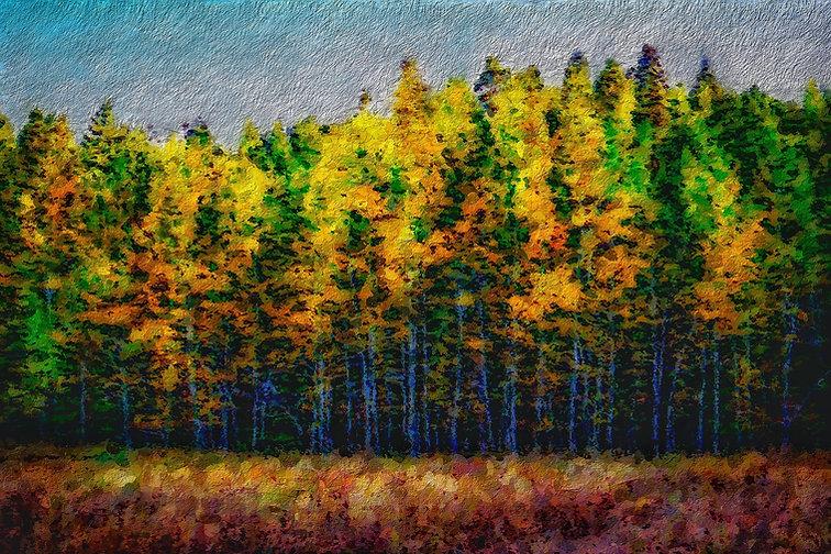 painting-5093077_1920.jpg
