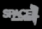 Space grey logo.png