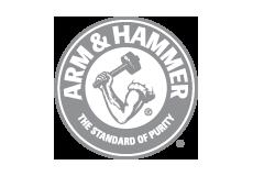 Arm Hammer grey logo.png