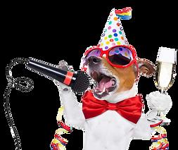 nye-dog-party-copy.png