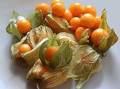 tomatillo.jpg