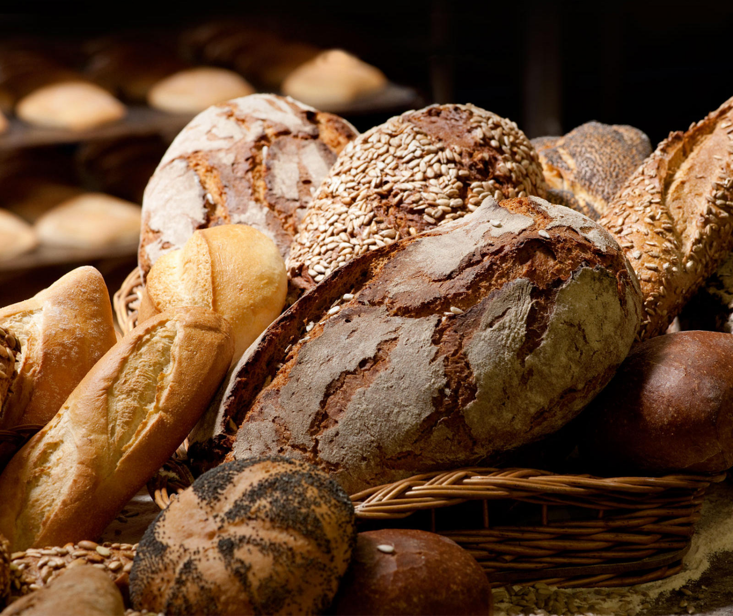 Our daily fresh baked bread for you