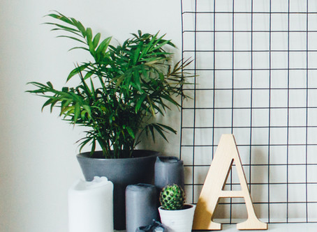 7 Health Benefits of Houseplants