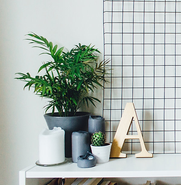 Plants and Candles