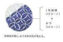 1剛透明とルリ.jpg