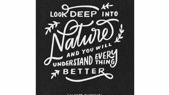 Worthwhile Paper Nature Einstein Quote 8x10 Print