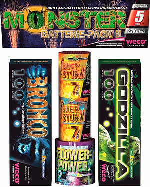 Monster Batterie Pack II