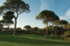 Cornelia-Golf-Club-Nick-Faldo-Championsh