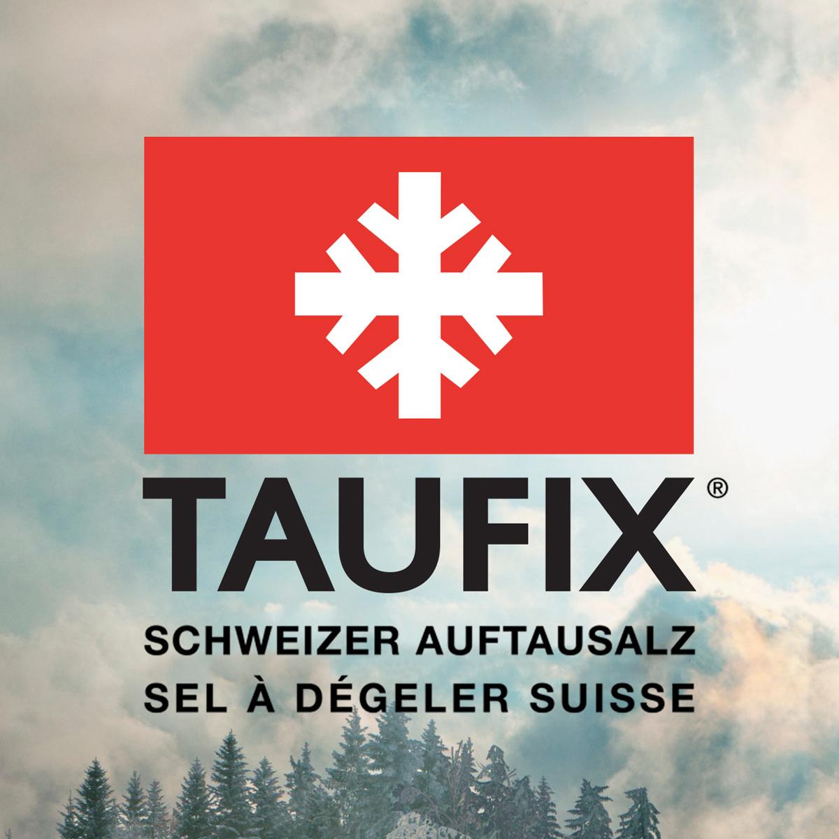 Logo Design mit Umgebung