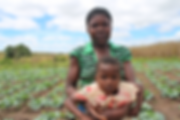 Agnes Jakaramba cultivates her own land in Lukya village