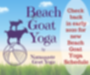 Beach Goat Yoga.png