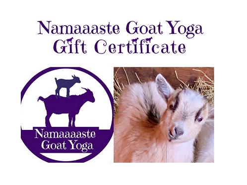 Namaaaste Goat Yoga Gift Certificate