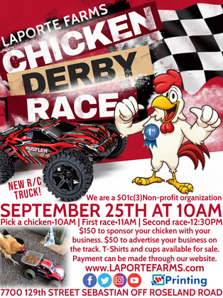 Chicken Derby Race