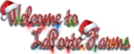 WelcomeChristmasLF_LOGO_1.png