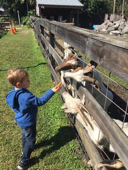 LaPorte Farms11(2)