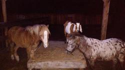 LaPorte Farms6(3)
