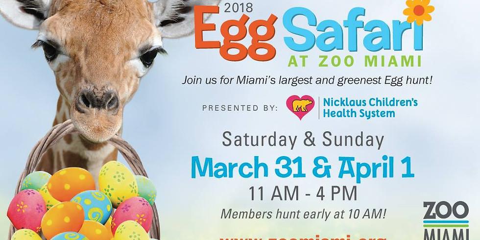 ¡Egg Safari en Zoo Miami!