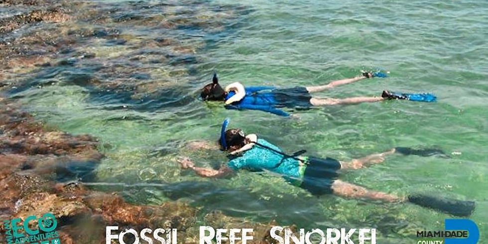 Fossil Reef Snorkel Adventure